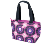 Small Cooler Bag | Igloo Mini Tote 8 - Holds 8 Cans